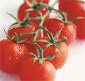 mini-tomato_ss