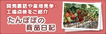 みやごしくんの商品開発日記