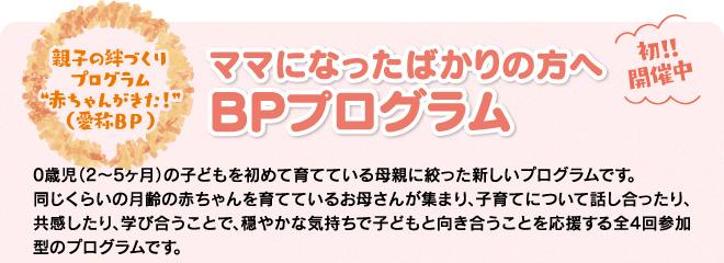 bp-program_01