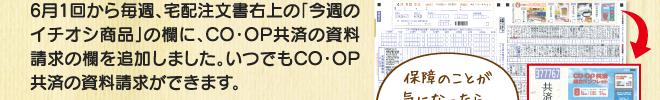 kyousai201906_05