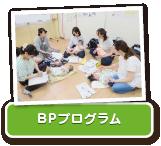 img-bp_program