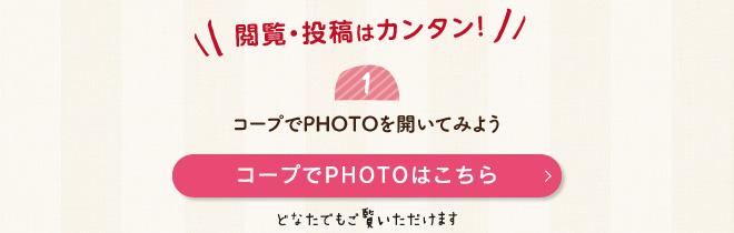 coopPhoto_02