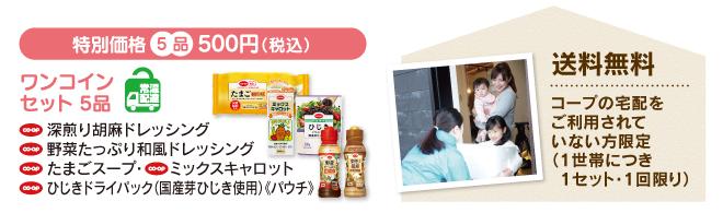 特別価格 5品 500円(税込)