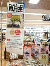 「東日本復興応援企画」を実施