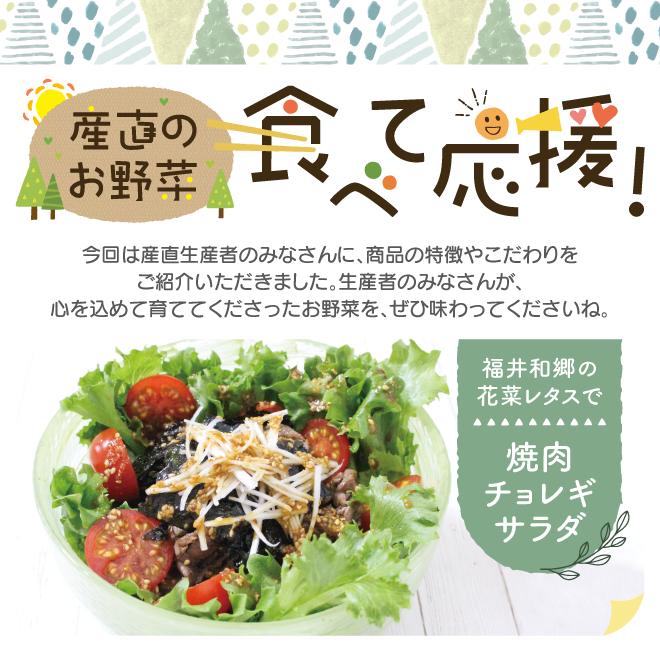 産直のお野菜 食べて応援!